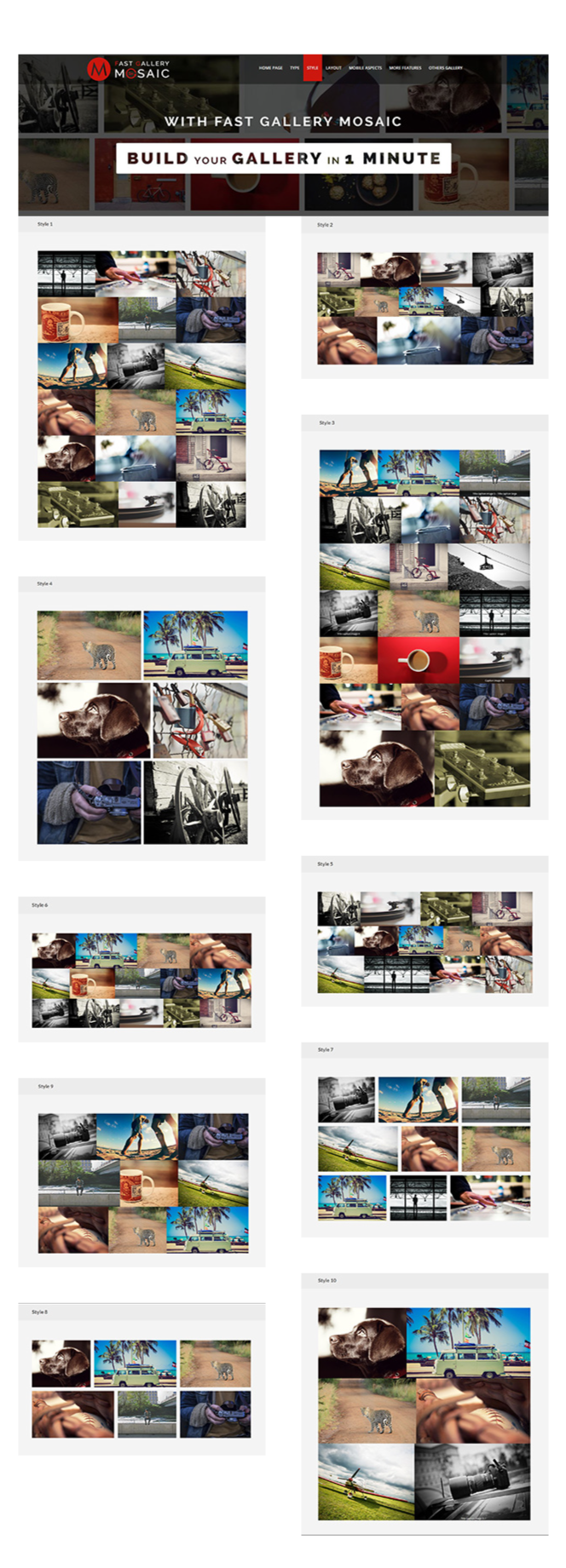 Fast Gallery Mosaic - WordPress Plugin 3